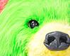 クマの目がかわいい