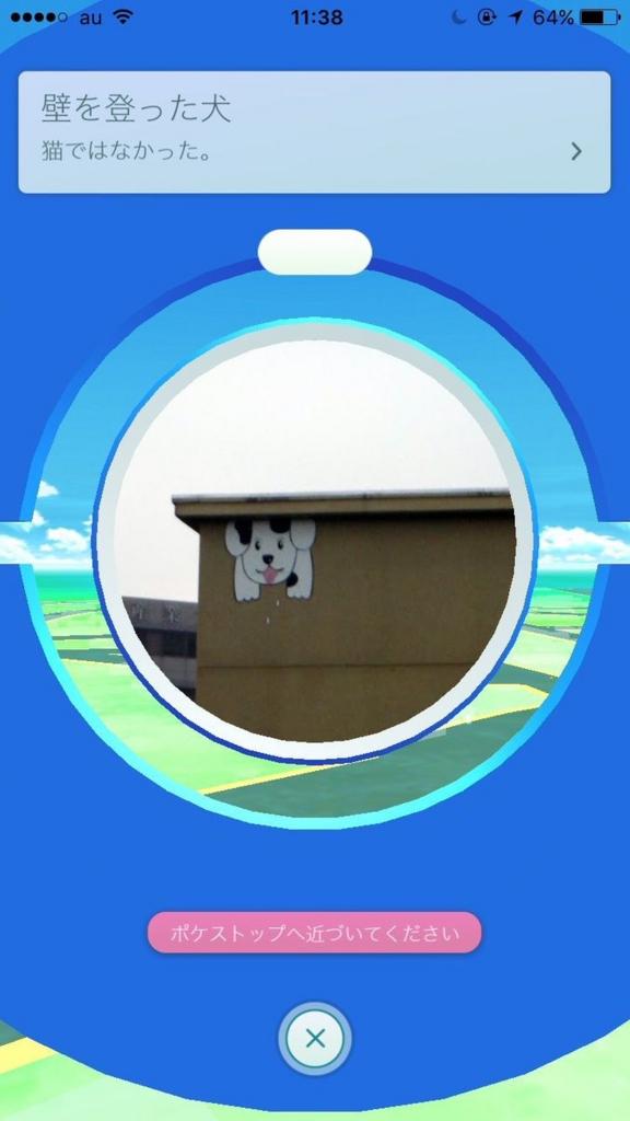 壁を上った犬 猫ではなかった