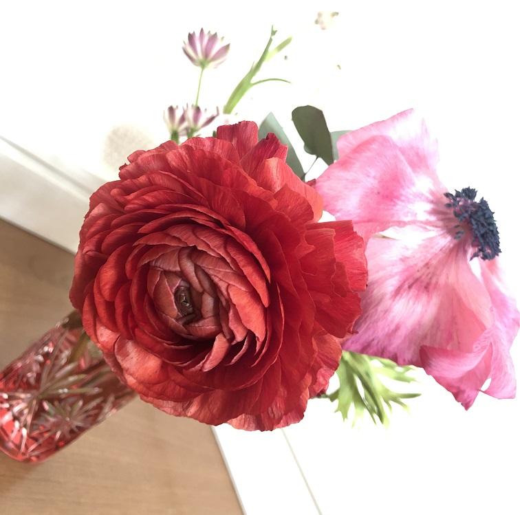 1週間経ったお花