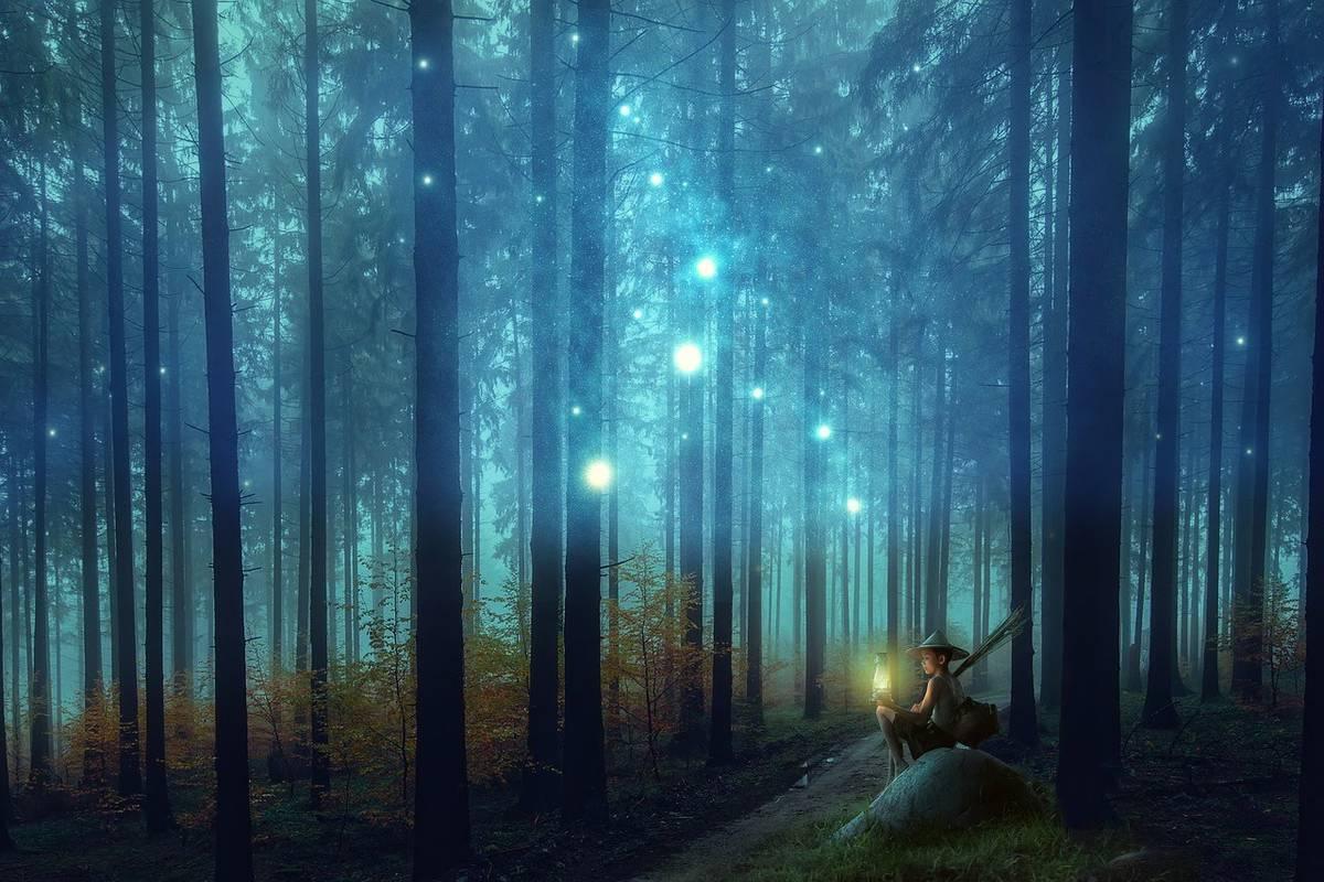 薄暗い森に座る少年の周りに無数の光が漂っている