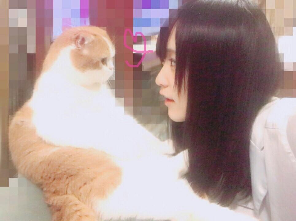 f:id:asitaha46:20170624042740j:image
