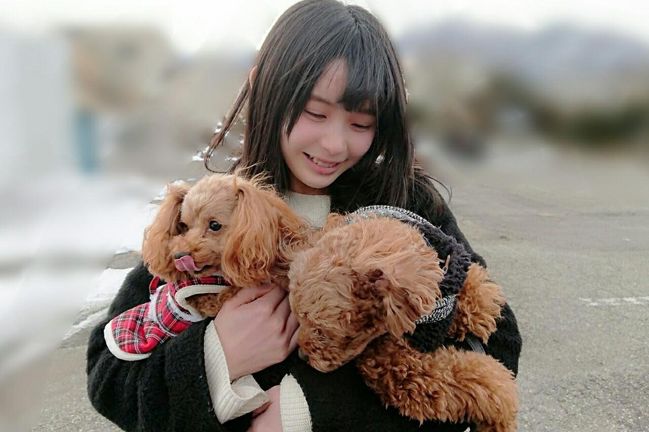 f:id:asitaha46:20180108020055j:image