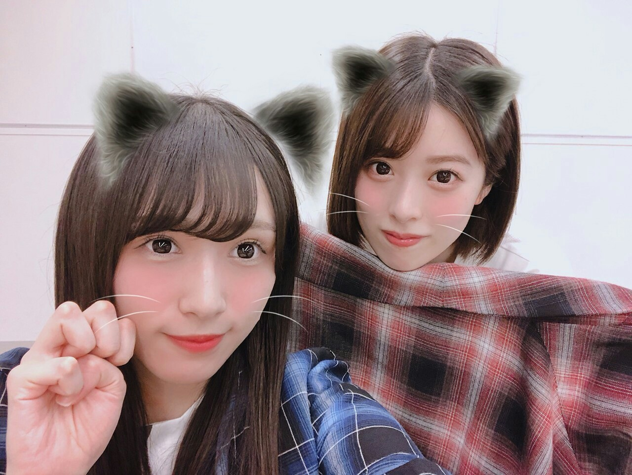 f:id:asitaha46:20181018212824j:image
