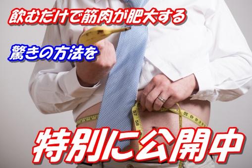 f:id:asitanotameno:20170821174946j:plain