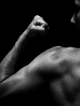 hmb タイミング 筋肉
