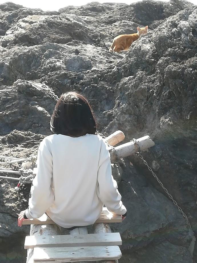 f:id:asoiyashi:20190204214017j:plain