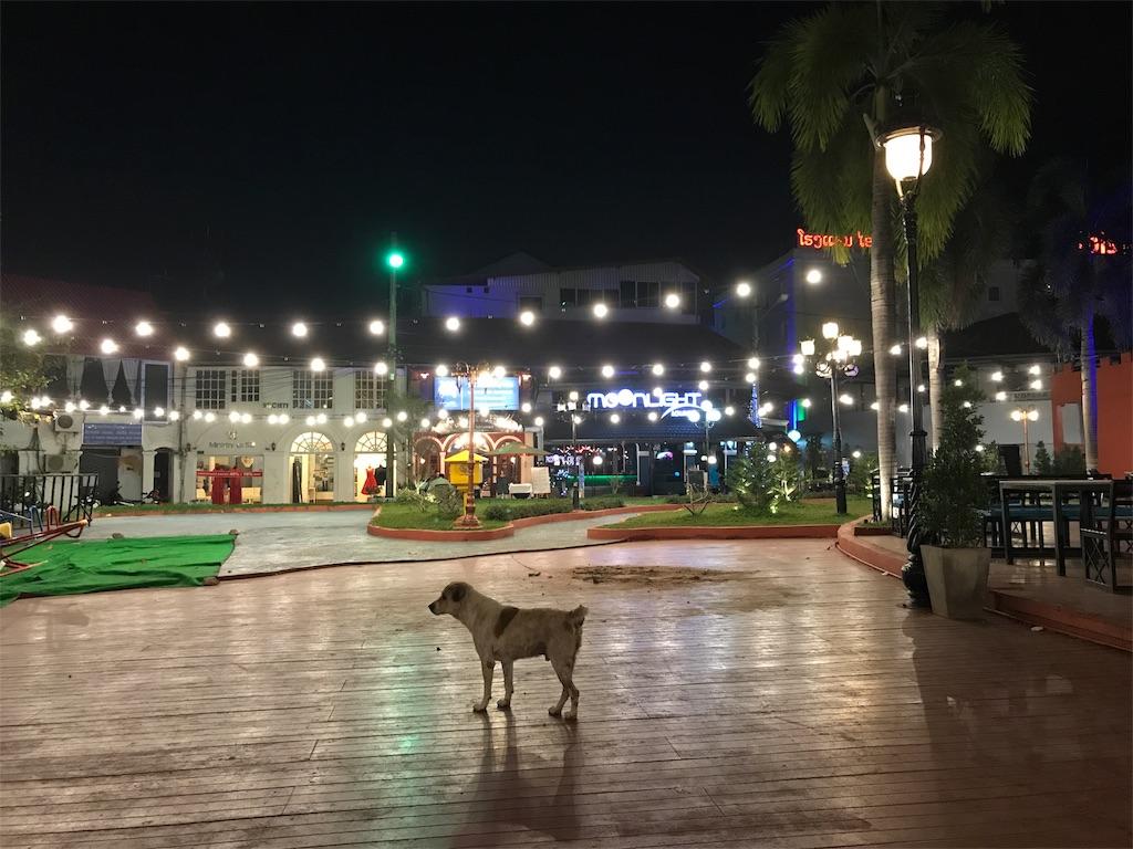 f:id:asquita:20181112094048j:image