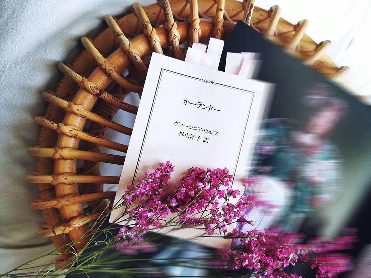 小説『オーランドー』の文庫本