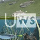 無料アセット 実在する地形をterrain化した素材パック 5種類の完成済みの山素材 ファンタジーゲームに最適なハンドペイントのskybox 関連で見つけた水システムのクオリティがすごい Uws Ultimate Water System Unity Assetstoreまとめ