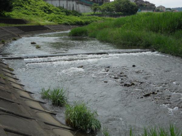 多自然川づくりを「見る」 - け...