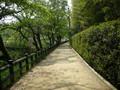 岡山後楽園のアプローチ