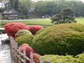 岡山後楽園の赤