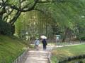 岡山後楽園で闊歩