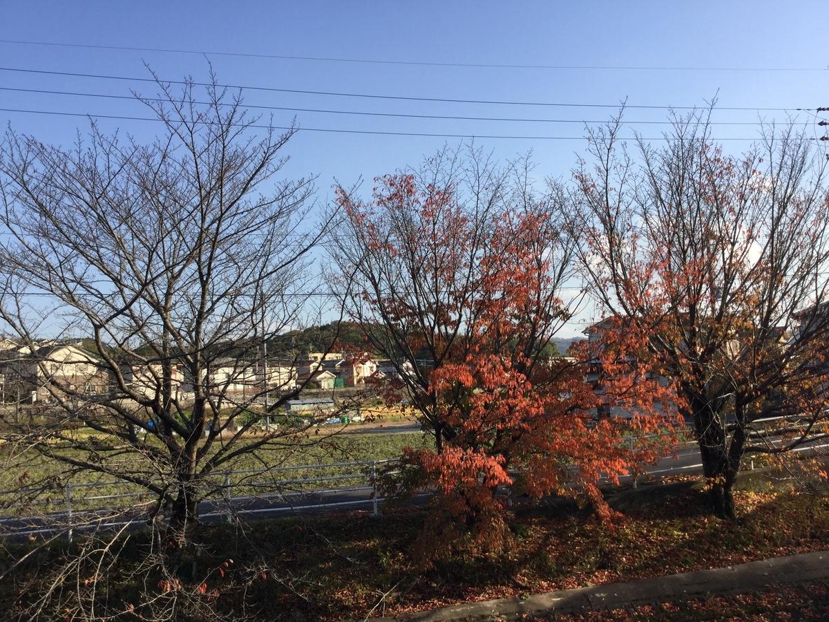 f:id:asuka-atopi:20191208170526j:plain