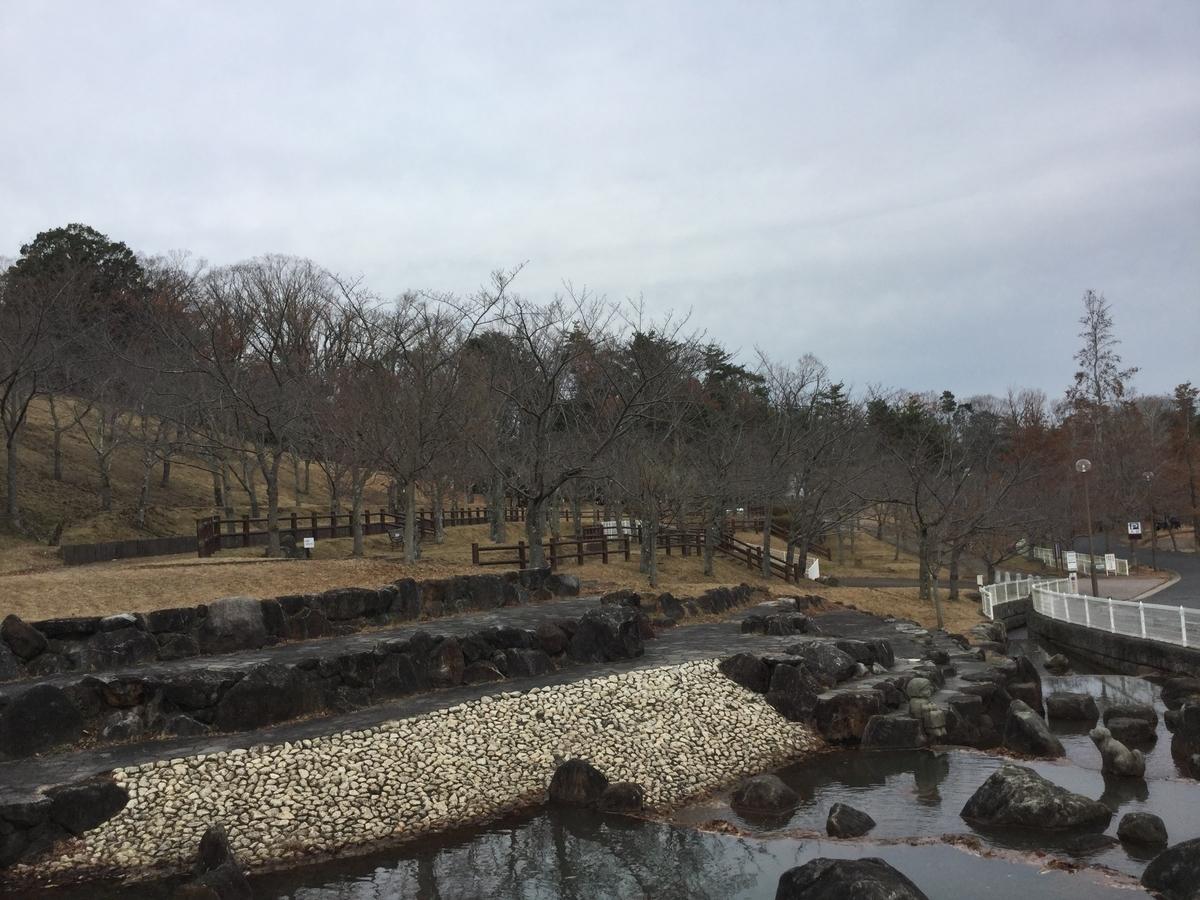 f:id:asuka-atopi:20191230152410j:plain