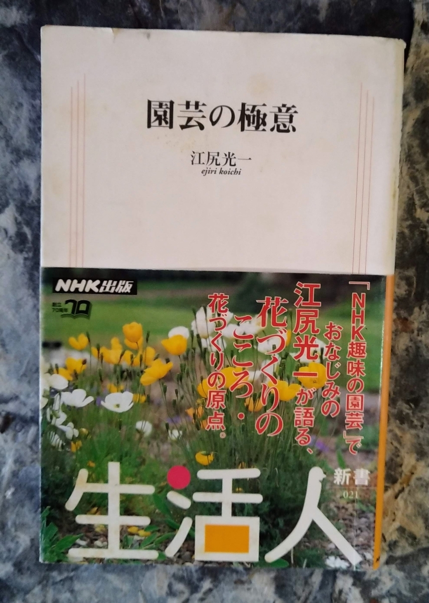 f:id:asuka201011:20210110092259j:plain