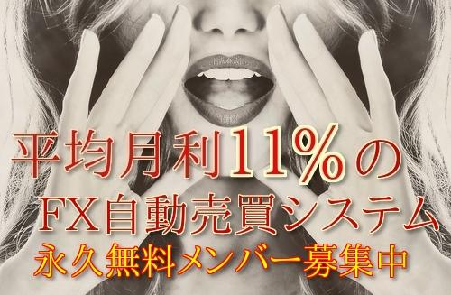 f:id:asukafx:20171012234010j:plain