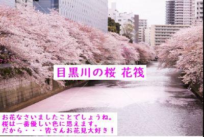 f:id:asumirai446:20190411212842j:plain