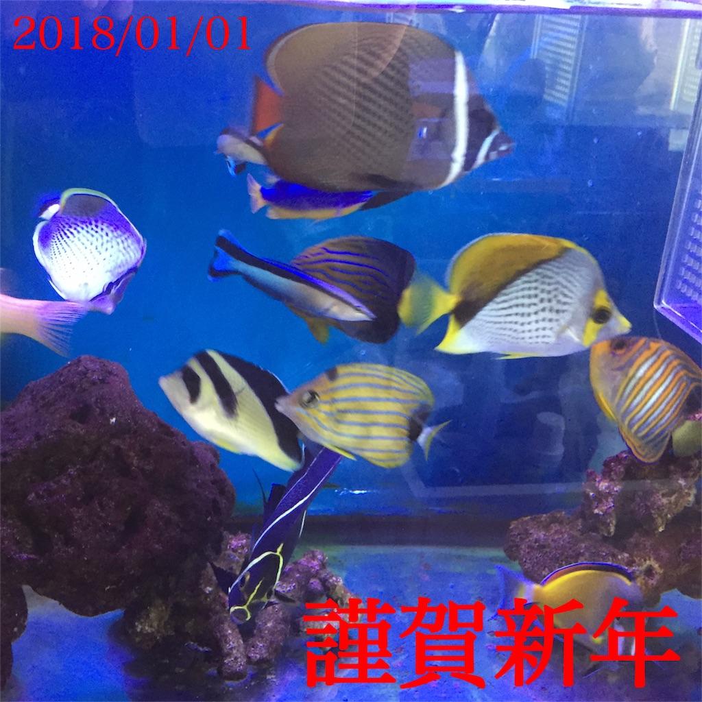 f:id:asumizu:20180101135352j:image