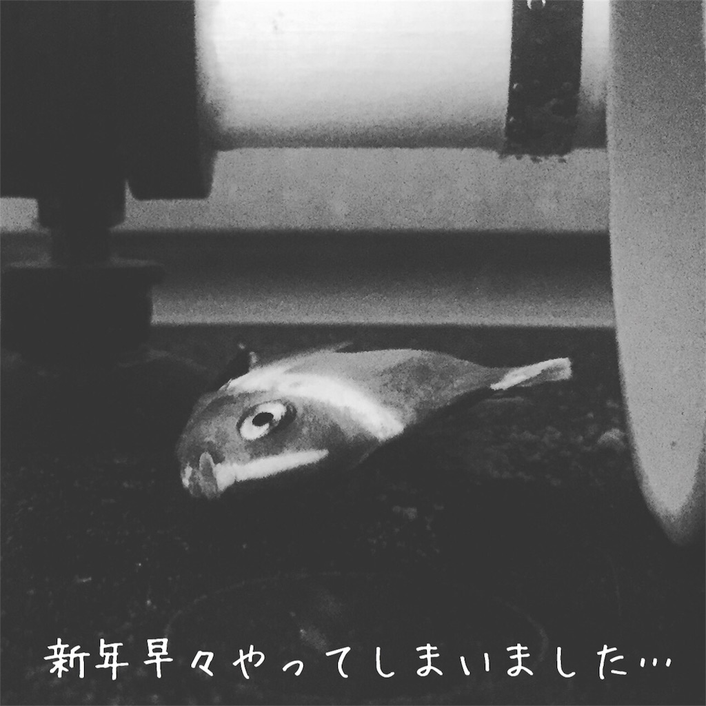 f:id:asumizu:20180101135437j:image