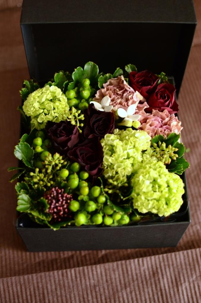 f:id:asunaro-flower:20180903021752j:plain