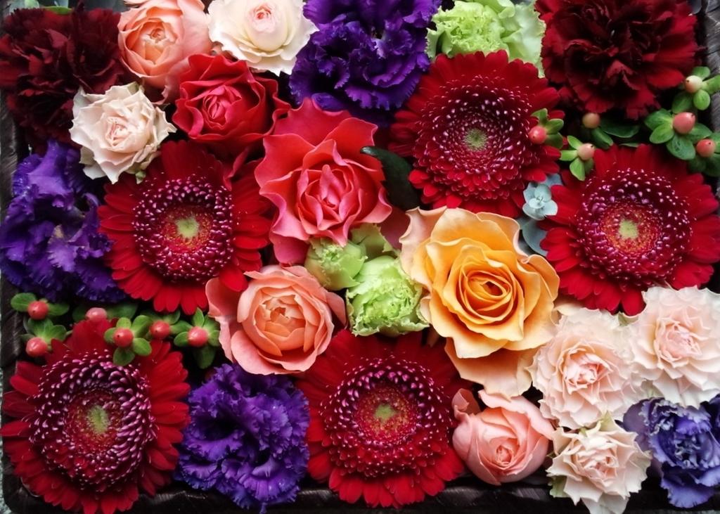 f:id:asunaro-flower:20181101235108j:plain