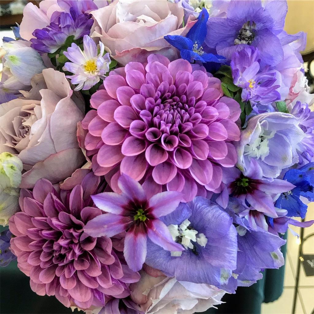 f:id:asunaro-flower:20190118120603j:image