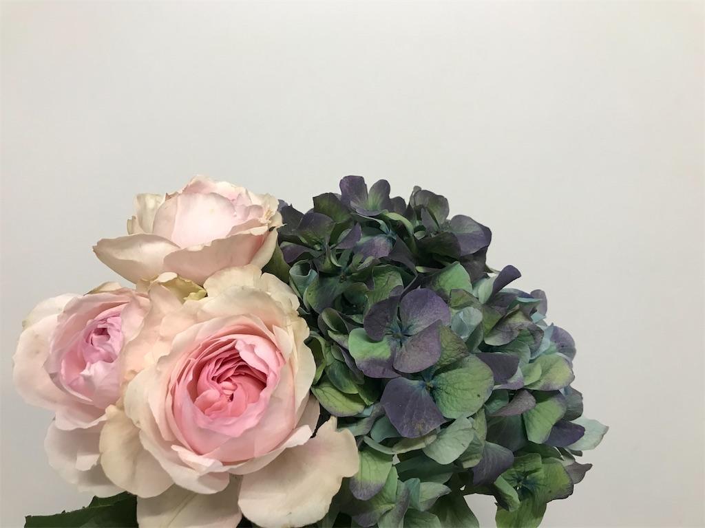 f:id:asunaro-flower:20190205175128j:image