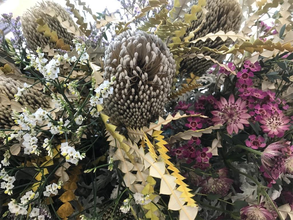 f:id:asunaro-flower:20190214123152j:image
