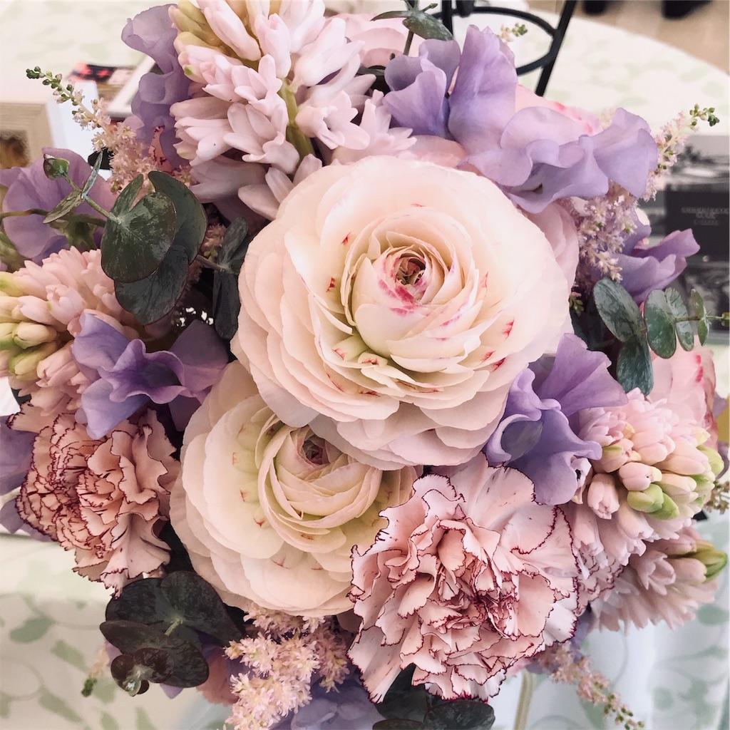 f:id:asunaro-flower:20190225132656j:image
