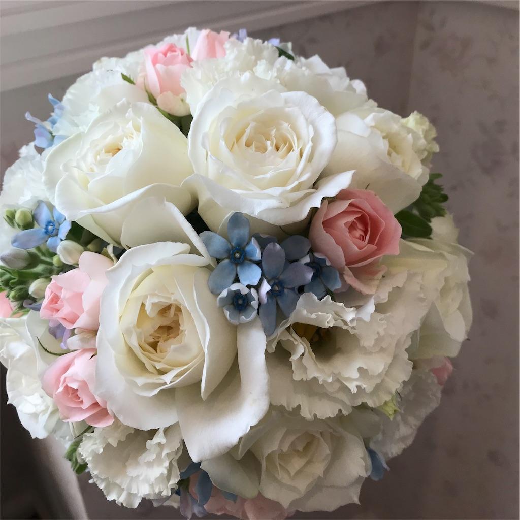 f:id:asunaro-flower:20190312162741j:image