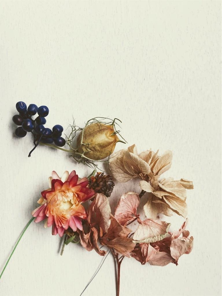 f:id:asunaro-flower:20190322010623j:image