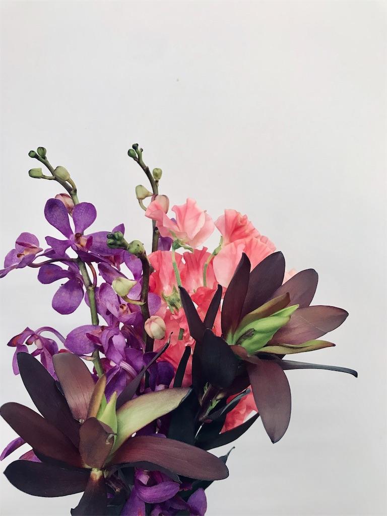 f:id:asunaro-flower:20190324174948j:image
