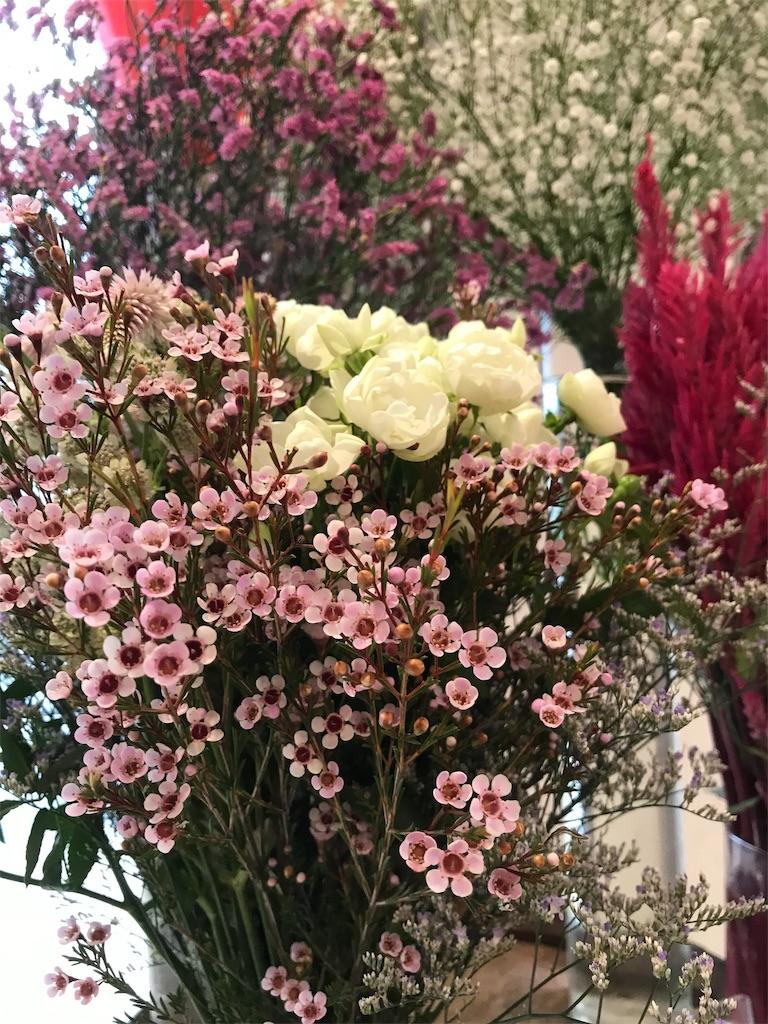 f:id:asunaro-flower:20190328002118j:image