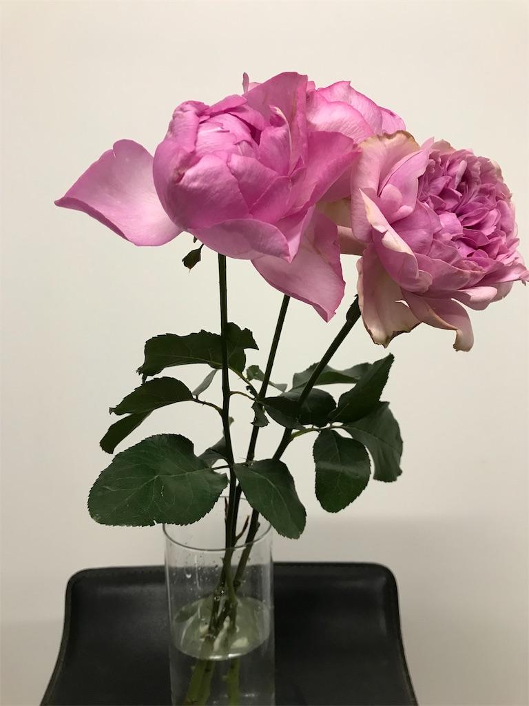 f:id:asunaro-flower:20190401205318j:image