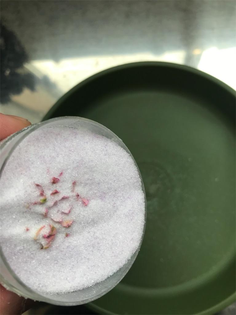 f:id:asunaro-flower:20190402150516j:image