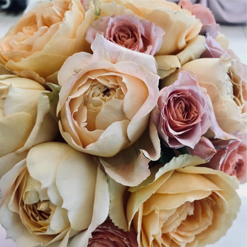 f:id:asunaro-flower:20190410205855j:image