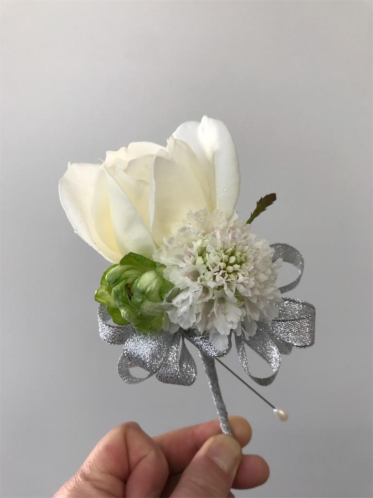 f:id:asunaro-flower:20190410214842j:image