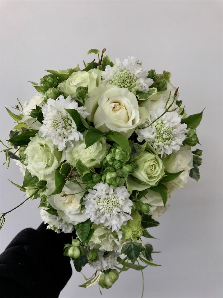 f:id:asunaro-flower:20190410214847j:image