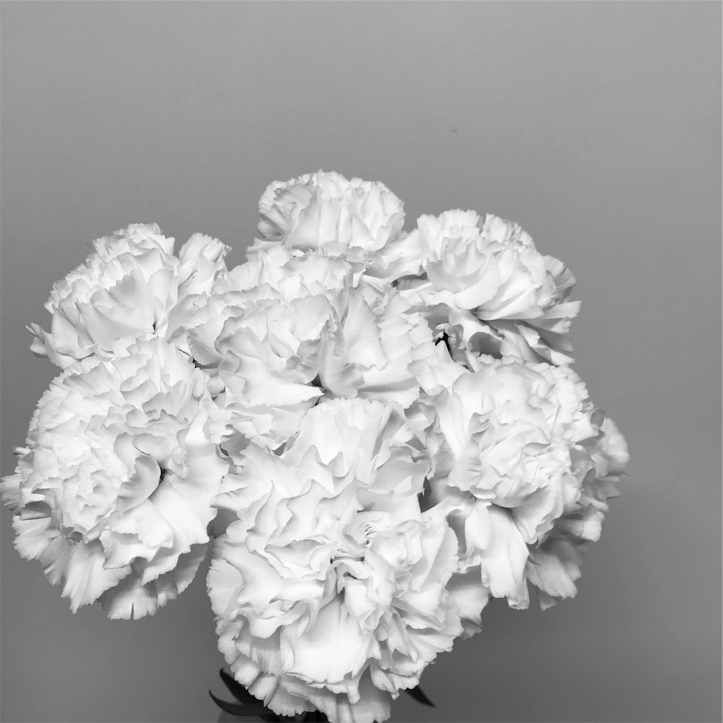 f:id:asunaro-flower:20190501181012j:image