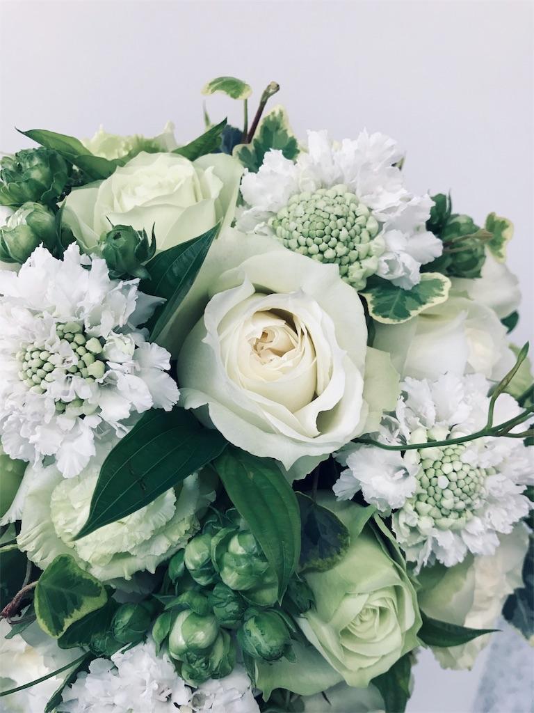 f:id:asunaro-flower:20190505221339j:image