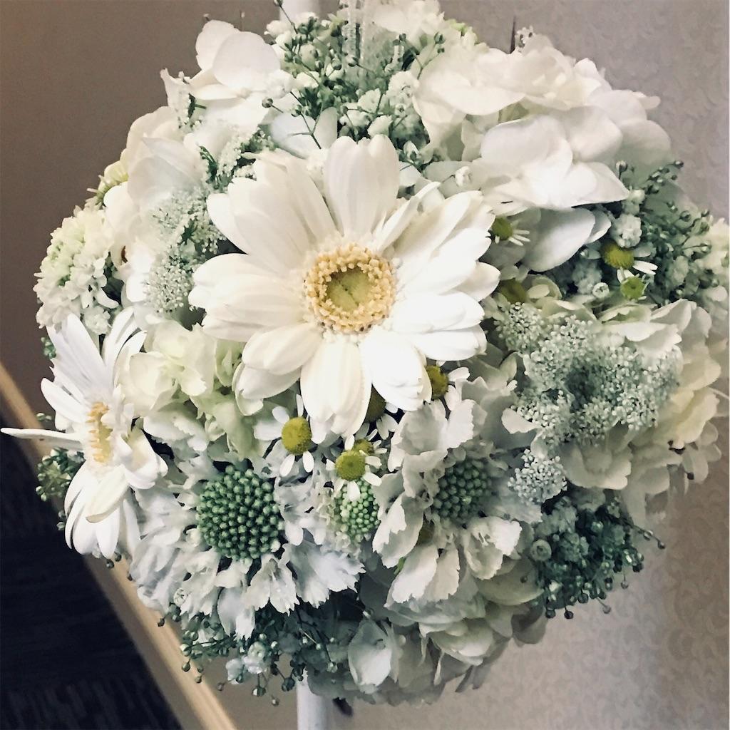 f:id:asunaro-flower:20190505224031j:image