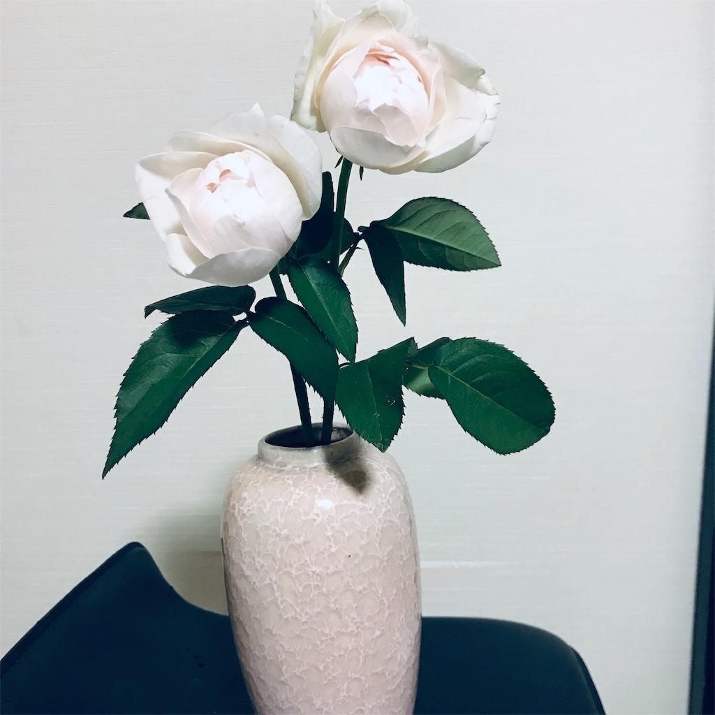 f:id:asunaro-flower:20190516121416j:image