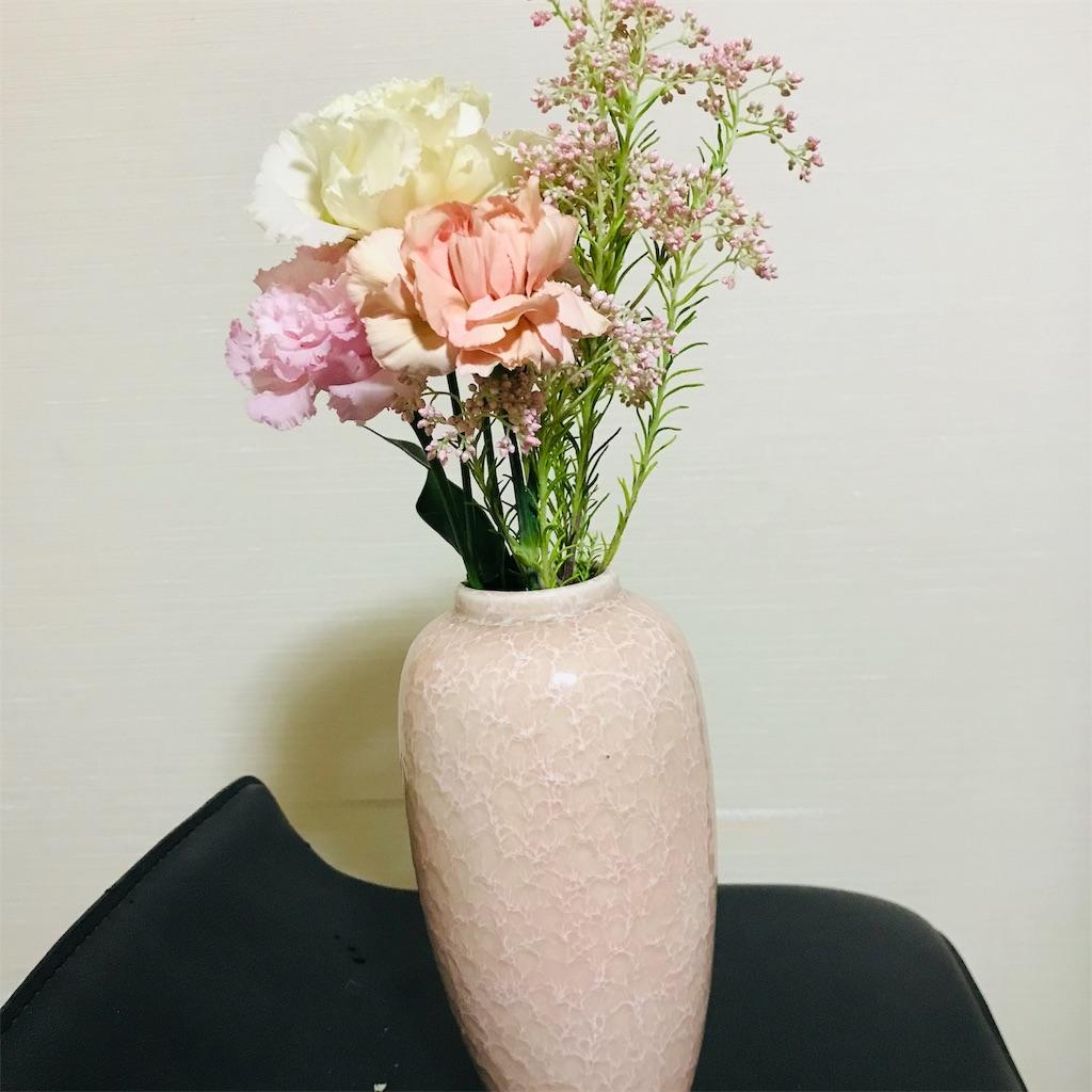 f:id:asunaro-flower:20190516121426j:image