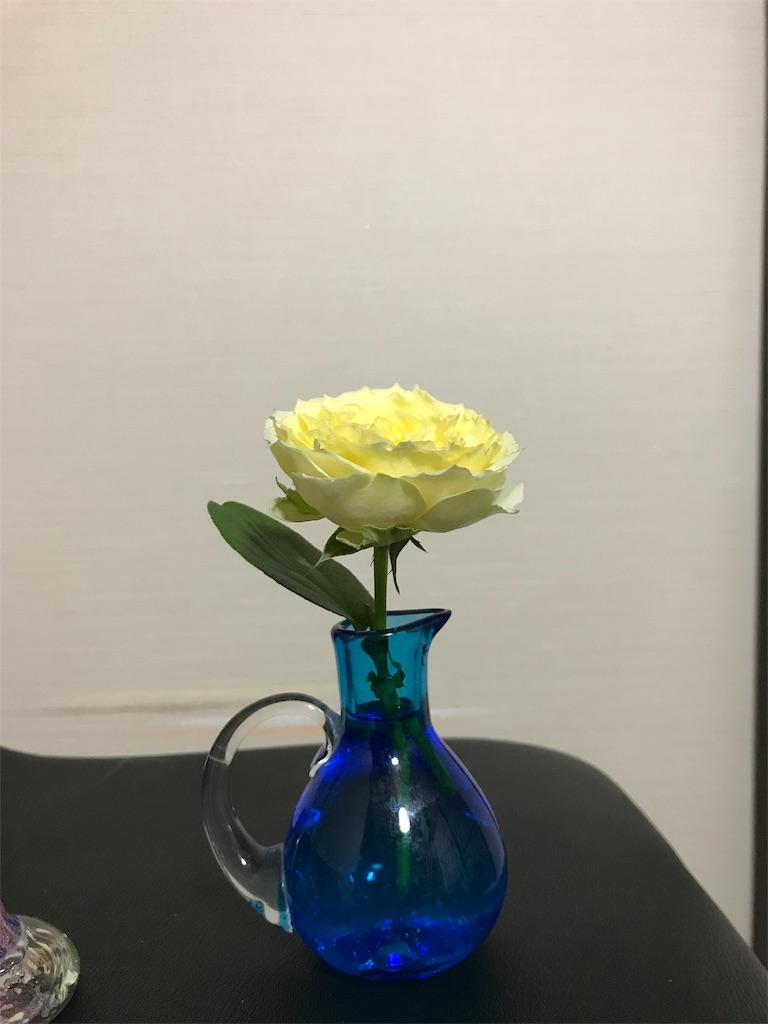 f:id:asunaro-flower:20190516233108j:image