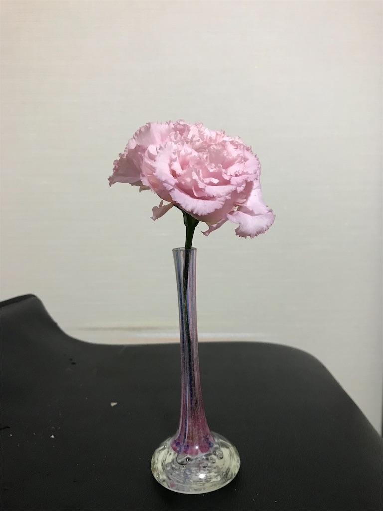 f:id:asunaro-flower:20190516233111j:image