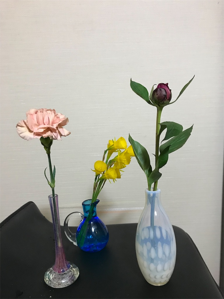 f:id:asunaro-flower:20190516233432j:image
