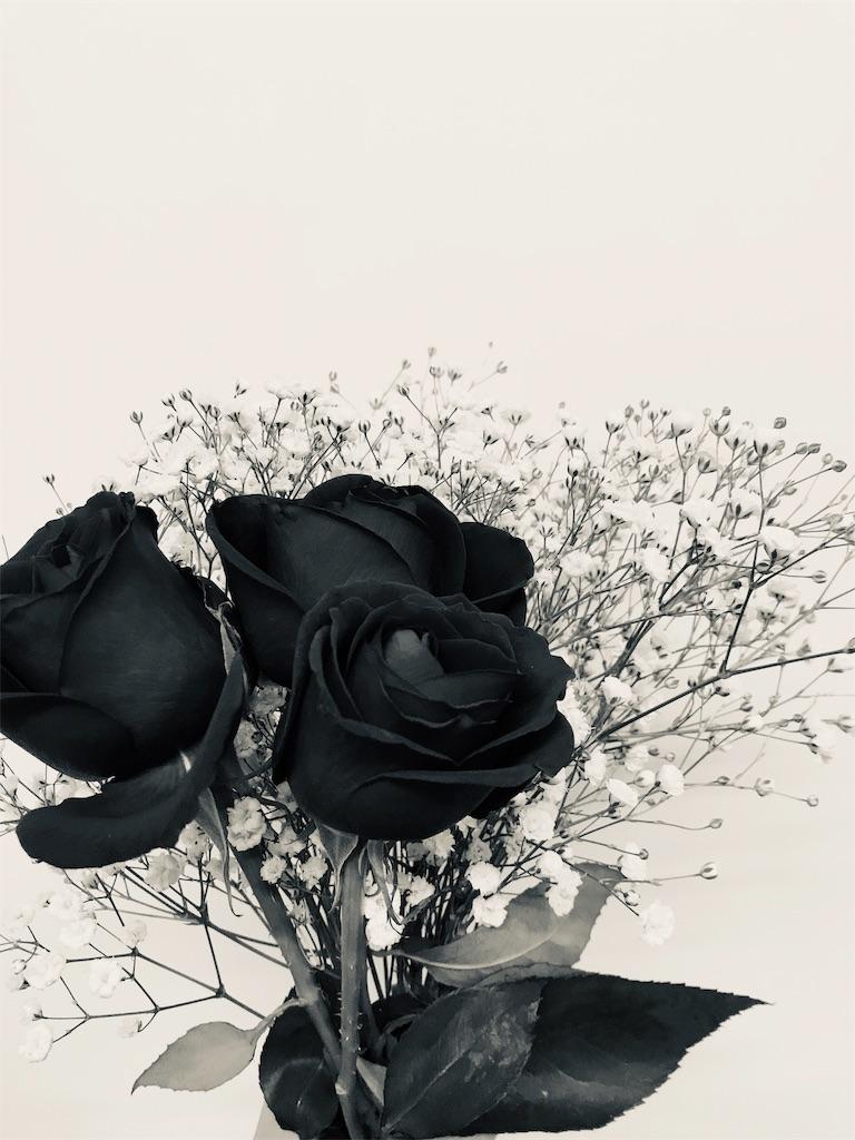 f:id:asunaro-flower:20190530225400j:plain