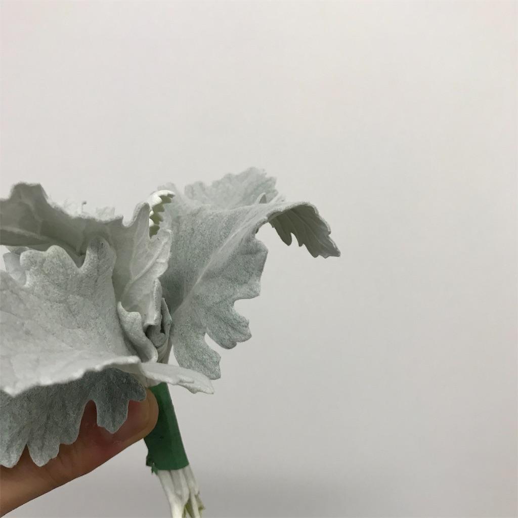 f:id:asunaro-flower:20190708000814j:image