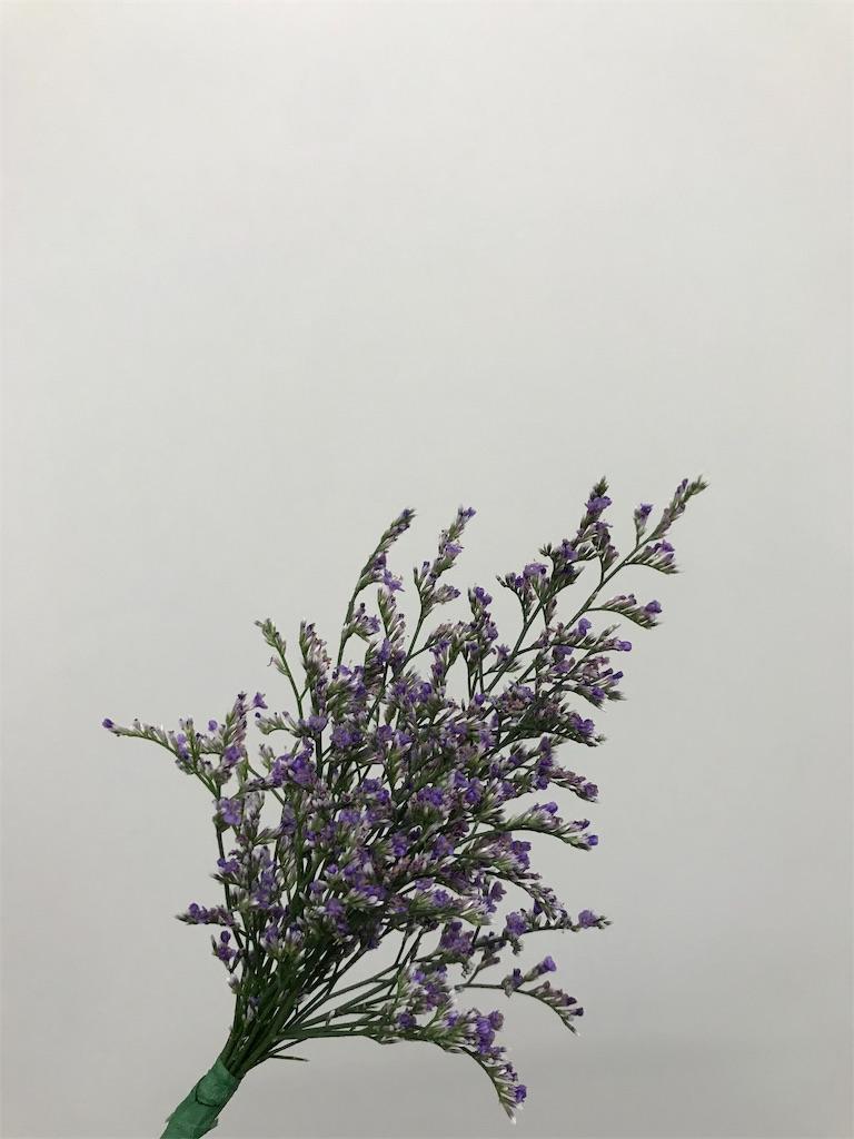 f:id:asunaro-flower:20190708011109j:image